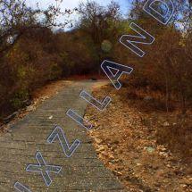 foto-3.jpg